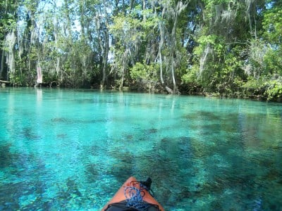 Transparent Waters:  Florida's Springs